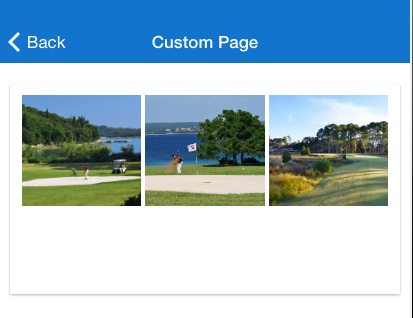 custom_page_app_images